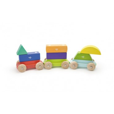 Tegu - Baby Shape Train - 9 pièces